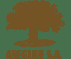 Logo de Asegures S.A.